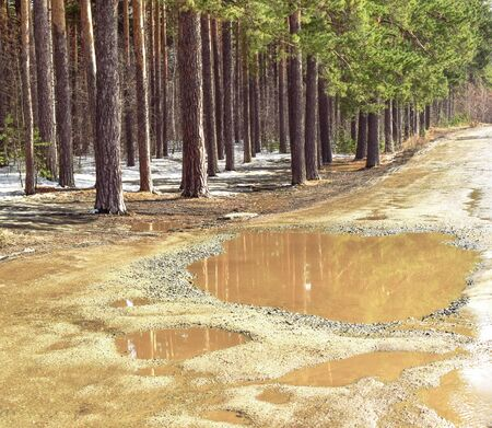 Large puddles on the road. Trees and sky are reflected in puddles. Bad road in the forest