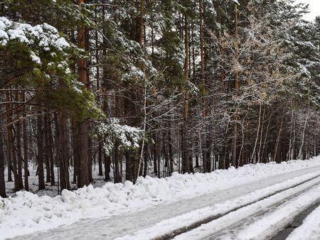Snow is melting on a forest road. Ice and water on a snowy road. Spring came. Snow track.