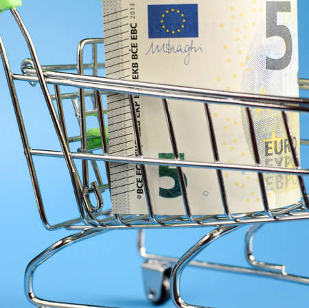Euro bill in a shopping basket, food cart, ordering food on the Internet. Selective focus.