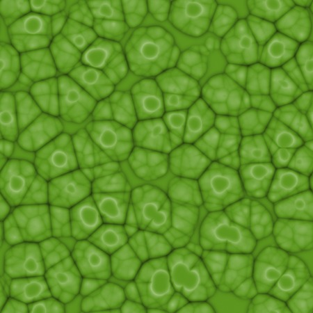 Seamless abstract green pattern plant cells under microscope.