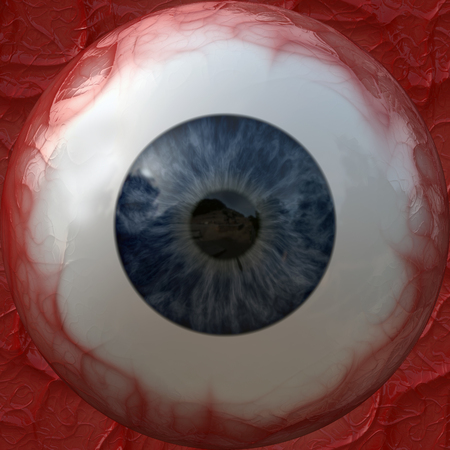 closeup: The texture of the eyeball.