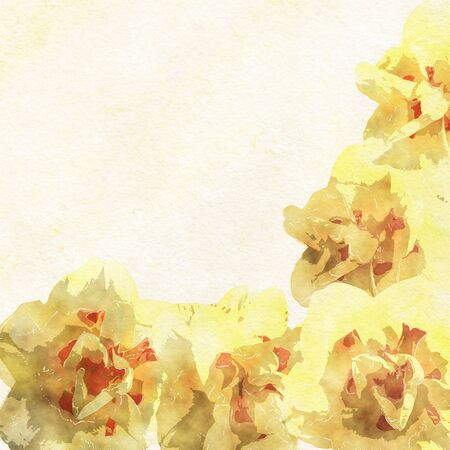 empty space for text: Watercolor composition yellow flowers with empty space for text message on water colour paper. Stock Photo