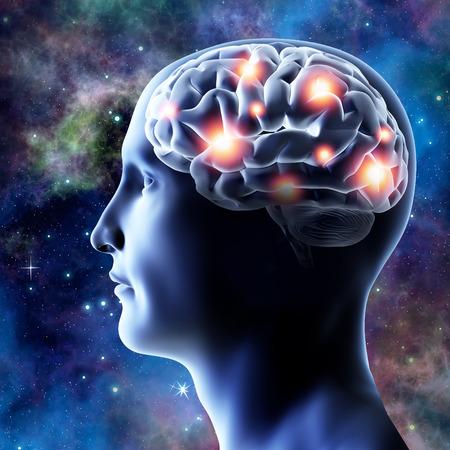 cerebro humano: La cabeza y el cerebro - ilustración 3D. Conexiones neuronales.