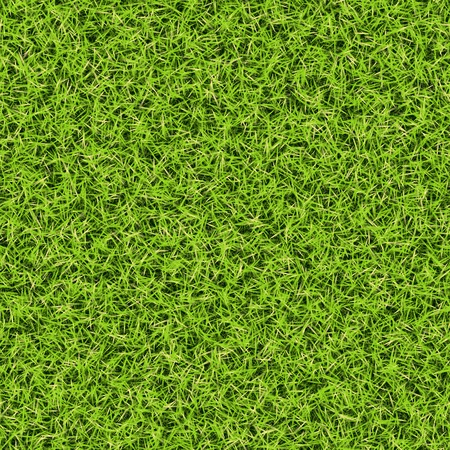 Seamless green grass background. Top view. Stock Photo