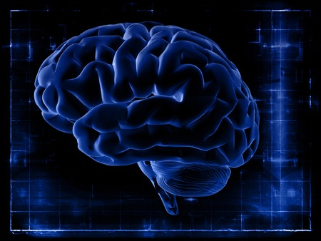 brain illustration: The study of the brain on the screen. Brain on a dark blue background. X-ray snapshot.
