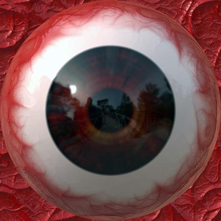 ojo humano: pupila de color marrón de un primer plano del ojo humano.