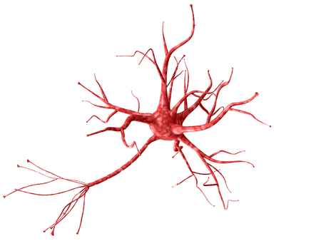 3d neuron isolated on white background closeup. A high resolution. 版權商用圖片