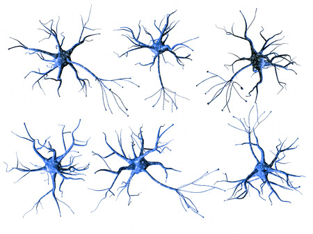 Set of different blue neurons isolated on white background. 3d rendering. Stock Photo