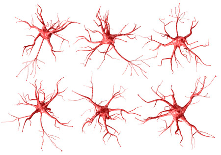 Set of red neurons on a white background. 3d rendering. Archivio Fotografico