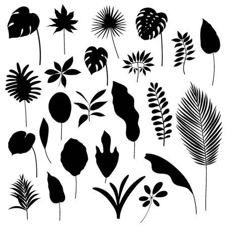 Vector set of black hand-drawn tropical leaves. Иллюстрация
