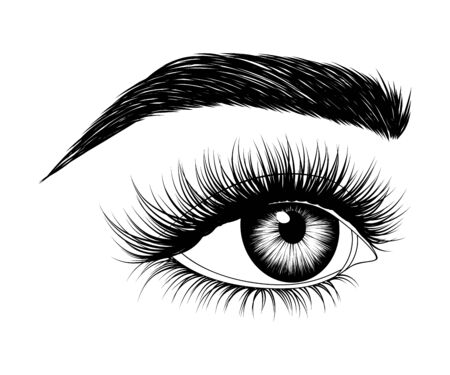 Hand-drawn woman's eye with eyebrow and long eyelashes. Side look. Fashion illustration.