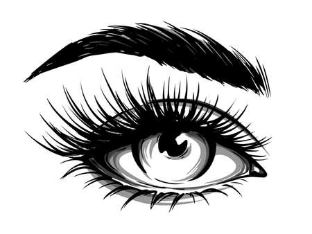 Hand-drawn woman's eye with eyebrow and long eyelashes. Fashion illustration. Vector Illustratie