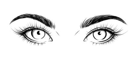 Eyes looking straight. Sexy look. Fashion illustration. Eye with eyebrows and long eyelashes. Vector EPS 10. Vetores