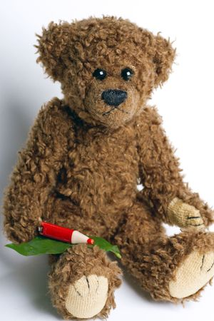 Bear Teddy with a pen and paper for messages. photo
