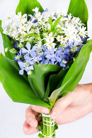 bouquet of spring flowers in a hand of the person photo
