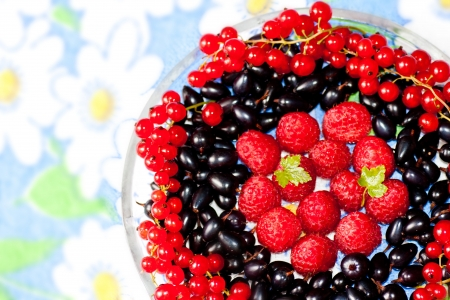plate with berries of raspberry, a currant and bilberry photo