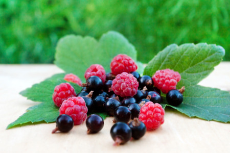 ripe raspberry and blackcurrant ( summer background ) Stock Photo