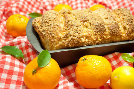 Homemade baking. A hot, aromatic pie with a crispy brown crust. Citrus pie (oranges, tangerines, lemon) in a baking dish. Christmas cake. Red and white checkered fabric background. Rich pastries. 版權商用圖片