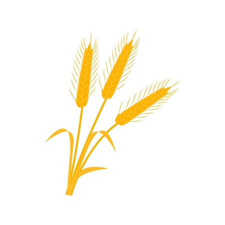 Wheat ear icons of the nature earns Ilustrace
