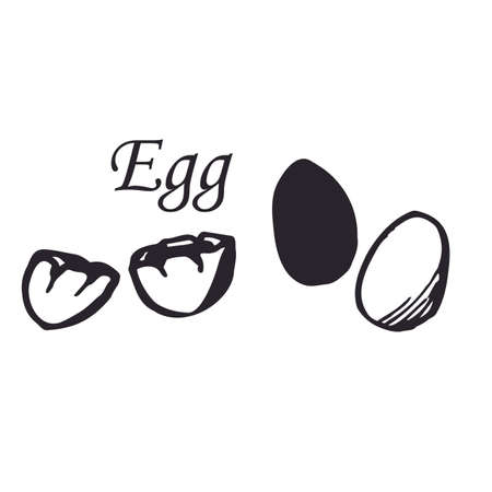 Vector set of egg in line art style. Sketch. Isolated on white background. Isolated.