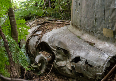 Port Underwood, New Zealand - December 27, 2017: Plane crash in a forest.