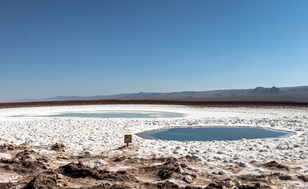 Hidden lagoons of Baltinache, Atacama Desert, Chile 版權商用圖片