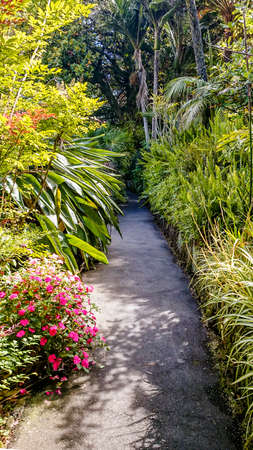 A pretty little pathway