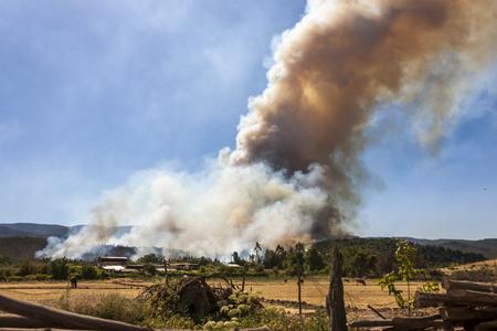 Forest Fire at Angol, Bio Bio Region, Chile.