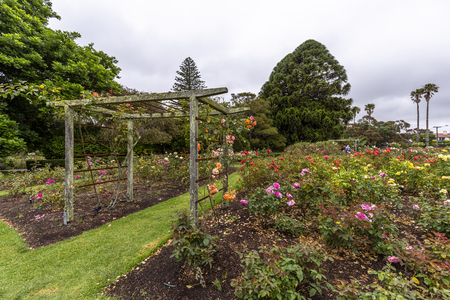 Parnell Rose Gardens in Auckland, New Zealand.