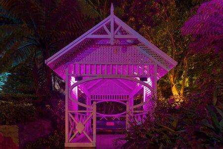 Botanic garden illuminated with artificial lights