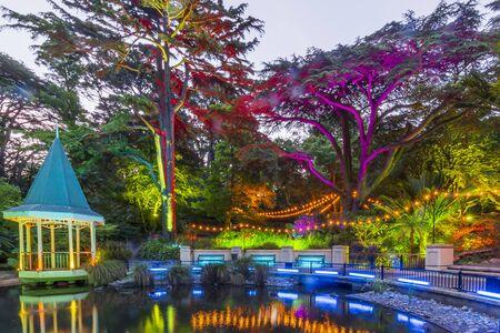 The Duck Pond at Gardens Magic - Dazzling displays of light amongst the trees of Wellington Botanic Garden, New Zealand. Foto de archivo