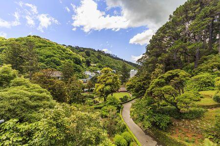 Wellington Botanic Garden, New Zealand Stock Photo
