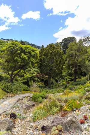 Wellington Botanic Garden, New Zealand