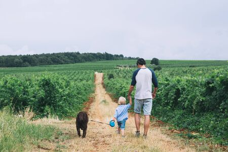 Father and son walking on nature, outdoors. Family background. Dad and his kid walking on the trail among the fields and vineyards.