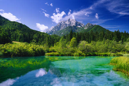 Green nature landscape. Amazing view on Zelenci (into English means - green) nature reserve and Alps mountains in Slovenia, Europe. Beautiful alpine valley with emerald lake at summer time.