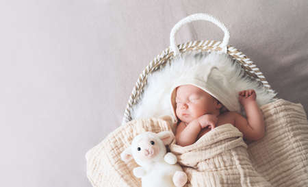 Sleeping newborn baby in basket wrapped in blanket in white fur background. Portrait of new born child one week old with little cute soft toys. 스톡 콘텐츠
