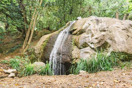 alupka: Landscape design. Artificial waterfall in the Park. Alupka, Crimea, Russia