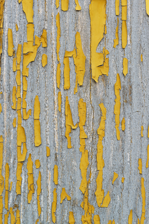 Fragment of old wooden surface with the remnants of the leafless paint ochre. Peeling paint reveals the texture of the wood. Background Stock Photo