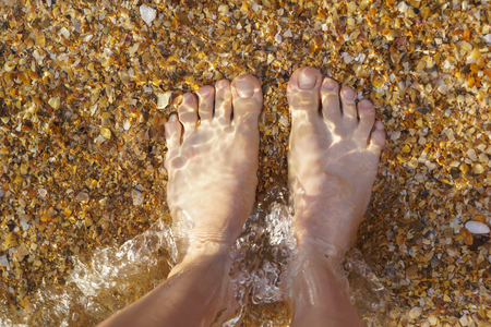 Feet in the crystal clear sea water. The bottom with the shell. The view from the top