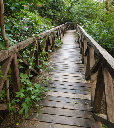 Beautiful small wooden bridge leading down the hill, overgrown with trees and bushes . Walk in the shade