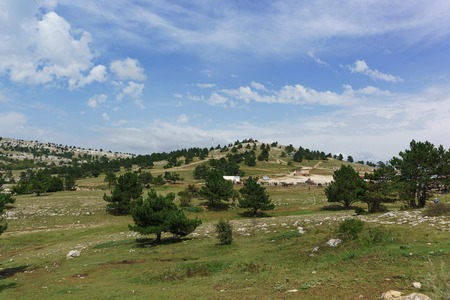 View of the plateau (Yayla) AI-Petri. Green young pines on a background of stone and blue sky. Popular tourist attraction in Crimean Stock Photo