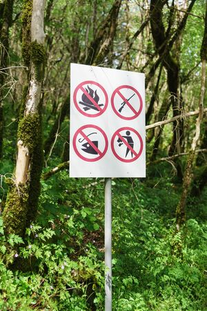 pictograms-pointers with a ban on fire, hunting, fishing and throwing garbage in a yew-Box grove in the Khostinsky district of Sochi. Russia, Krasnodar region