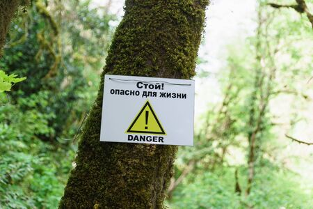 the sign Warning of danger on a tree in a yew-Box grove. Khosta, Sochi, Krasnodar region. The inscription in Russian  Stop! Life-threatening Stock fotó