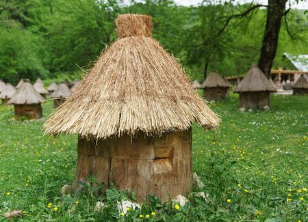 Wooden bee hive covered with straw stands in a flowering meadow. Bees fly in through the hole. Wild-hive honey