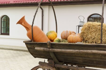 Terracotta jug and orange pumpkins on a wooden cart. Farm yard