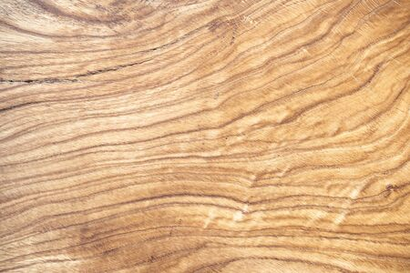 Natural wooden background with beautiful streaks. Solid piece of wood with annual rings. Copy space