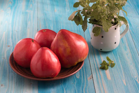 Large rustic pink tomatoes on a blue wooden table. In the mug - a bunch of Melissa Фото со стока
