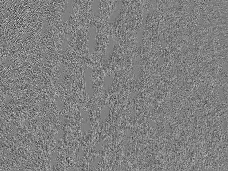 Sutil grey cat texture Stock Photo - 4137977