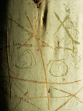 Tic Tac Toe game on bark photo