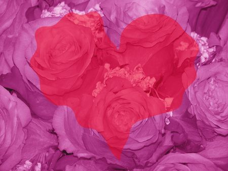 romaticism: Pink roses and heart, love